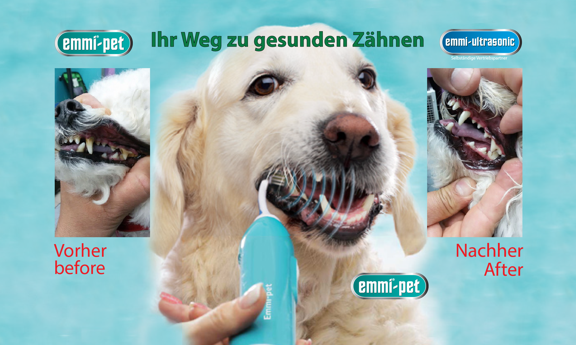 How the emmi®-pet toothbrush for dogs removes tartar and mouth odor