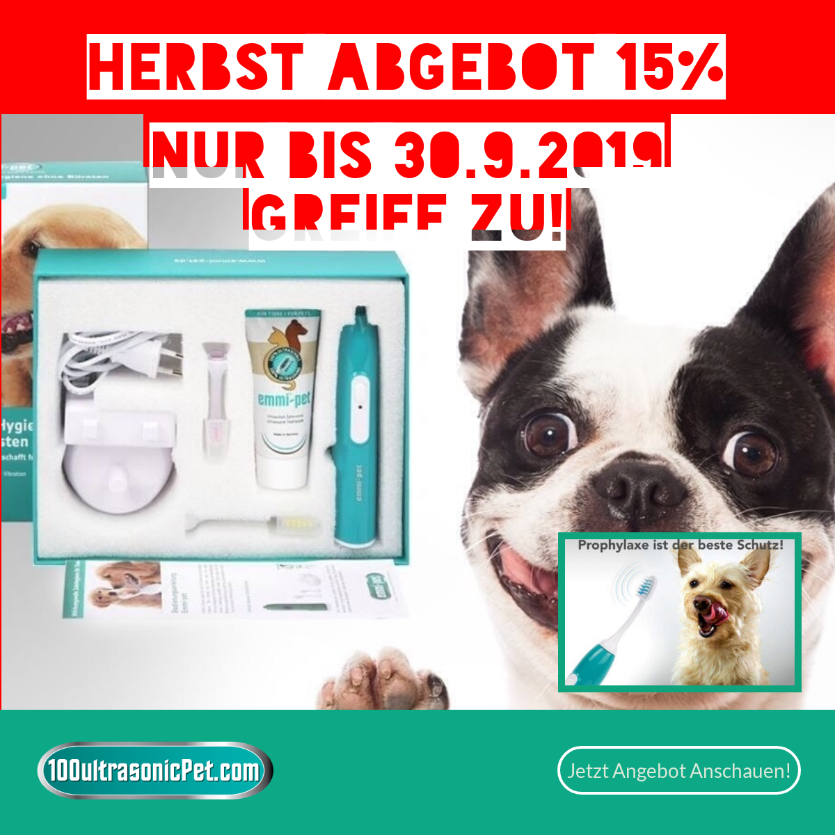 HerbstsAngebot Emmi-pet